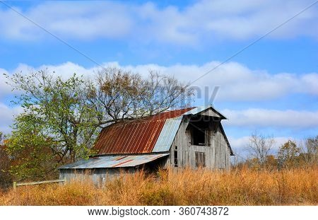 Weathered Wooden Barn, With Rusty Tin Roof, Is Slowly Being Overgrown With Weeds.  Loft Is Open And