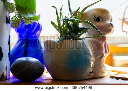 Aloe Type Houseplant Potted In Vintage White Lamb Pot Surrounded By Trinkets Knick Knacks On A Wood