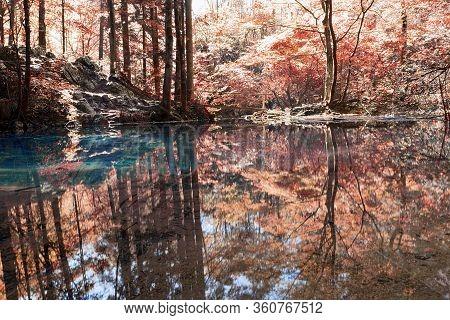 Beautiful Autumn Colors At Ochiul Bei, Cheile Nerei Natural Park, Romania