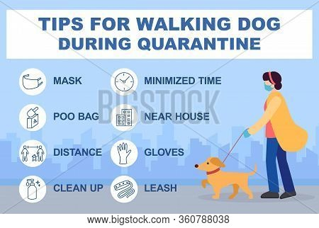 Tips For Walking Dog During Quarantine Coronavirus 2019-covid. Infographics Recommendations For Walk
