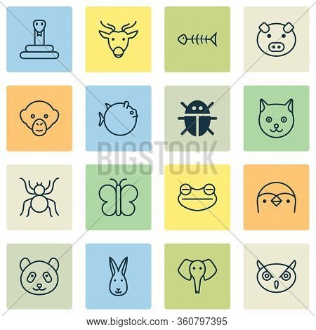 Nature Icons Set With Fish Bone, Panda, Elephant Butterflyfish Elements. Isolated Illustration Natur