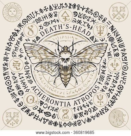 Vector Illustration With A Butterfly Dead Head With Skull-shaped Pattern On The Thorax In Retro Styl