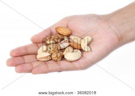 Hand Full Of Dry Fruits