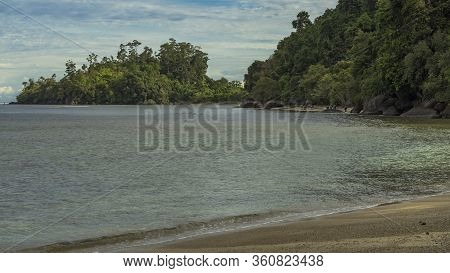 Wild Beach Scene With Buffallos Walking In The Ocean Next To Lush Jungle Forest In West Sumatra, Ind