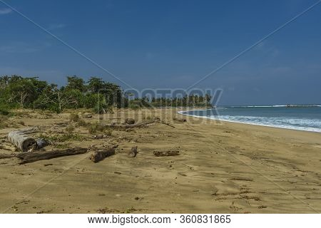 Regular Scene At Wild Beach In Lampung, Sumatra. Beach Ful Lof Driftwood And Big Waves In Indian Oce
