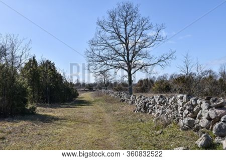 Footpath By A Dry Stone Wall In Spring Season