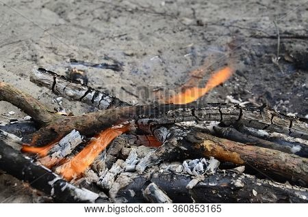 The Fire Is Burning Down. Burnt Wood, Ash. A Small Flame In The Fire. Burnt Twigs, Branches And Trun
