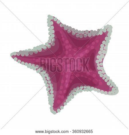 Starfish Vector Icon.cartoon Vector Icon Isolated On White Background Starfish.