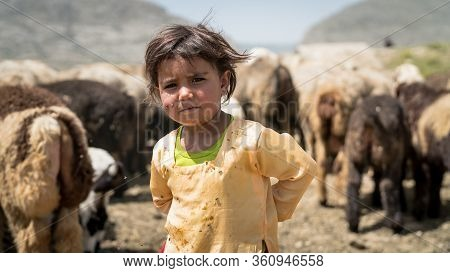 Shiraz, Iran - May 2019: Portrait Of Qashqai Turkish Girl With A Group Of Goats. The Qasqhai Are Nom