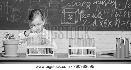 School Chemical Experiment. School Education. Interesting Approach To Learn. Kid Like To Experiment.