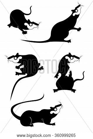 Original Rat Or Mouse Set For Design. Rat Or Mouse Original Black On White Vector Illustration