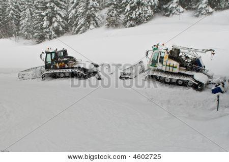 Ratracks In Alp