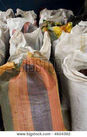 Cocoa Bean Bags In Peru
