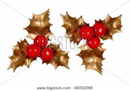 Holly Branch. Christmas Symbol