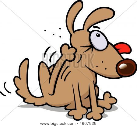 A dog scratching fleas vector RGB image poster