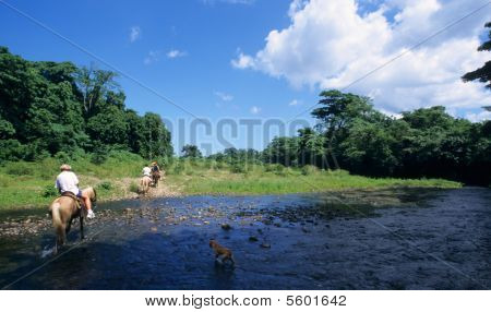 Horse Riding Crossing A River  In Dominican Republic
