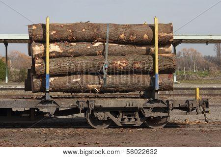 Logs on rail car