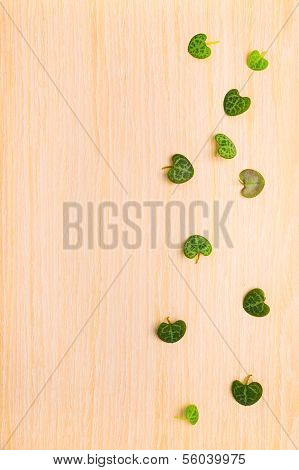 Leaves Ceropegia Woodii On Wood Texture