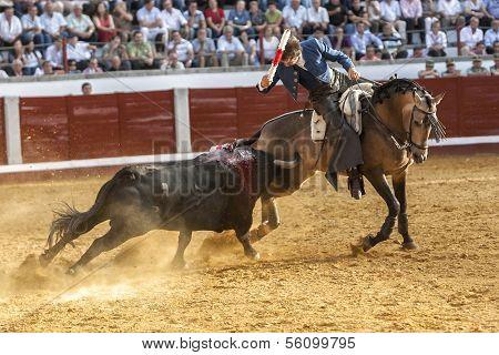 Spanish bullfighter on horseback Pablo Hermoso de Mendoza bullfighting on horseback