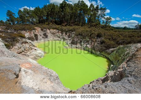 Incredibly green and highly toxic Devil's Bath crater lake at Wai-O-Tapu geothermal area, New Zealand