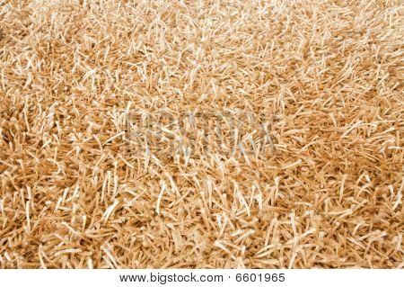 Shaggy Carpet Background