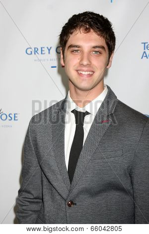 LOS ANGELES - JUN 1:  David Lambert at the 7th Annual Television Academy Honors at SLS Hotel on June 1, 2014 in Los Angeles, CA