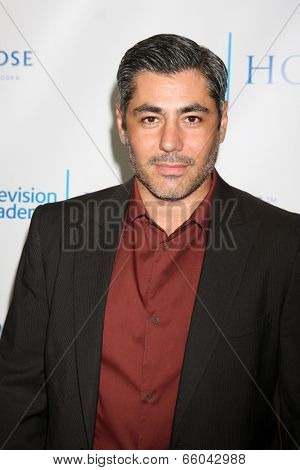 LOS ANGELES - JUN 1:  Danny Nucci at the 7th Annual Television Academy Honors at SLS Hotel on June 1, 2014 in Los Angeles, CA