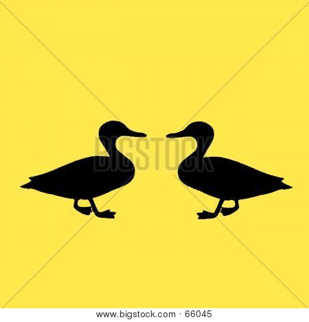 Two ducks poster
