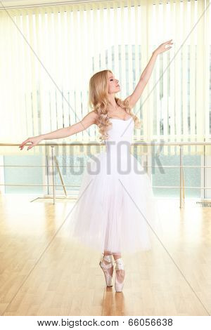 Beautiful balerina dancing in ballet class poster