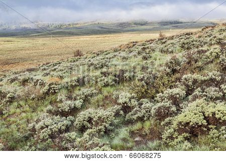 a mountain valley with hills covered by sagebrush in early spring morning, North Park, Colorado