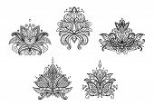 Turkish, indian and persian paisley floral motifs set isolated on white background poster