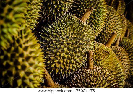 King Fruit - Durian