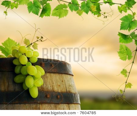 Wine barrel with fresh grape and grapevine framing, on background of sunset vineyard poster