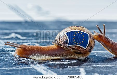 Snail With The Colors Of Europe Flag Encouraged By Another Country