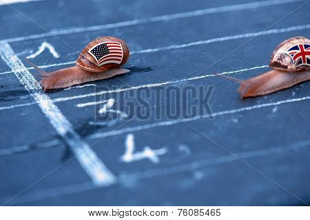 Snails Race Metaphor About Usa Against England