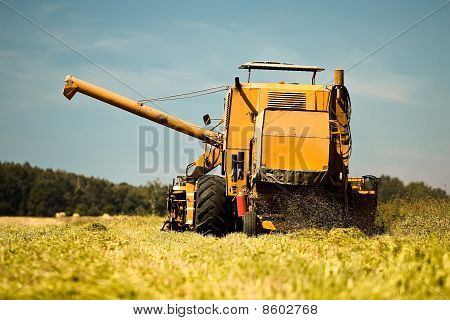 Yellow Combine Harvester Working In A Wheat Field