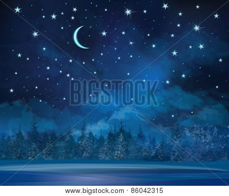 Vector night winter background.