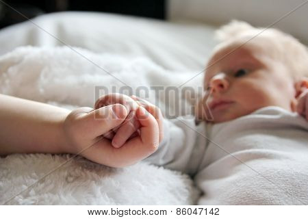 Close up focus on the hands of a newborn baby girl and her toddler brother lovingly holding hands with infant in the background. poster
