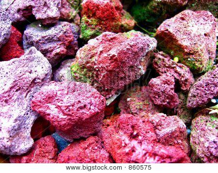 Red Mossy Rocks 2