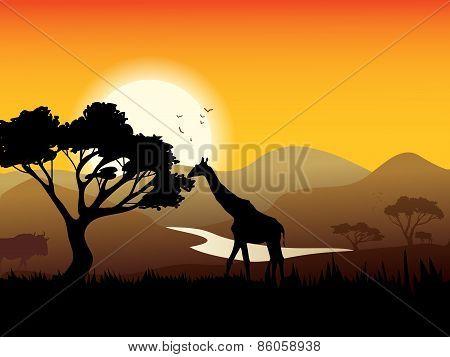 African Landscape Poster