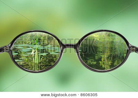 Veiw Throughf A Glasses