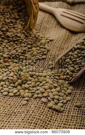 Variations Lentils, Lentils Bio