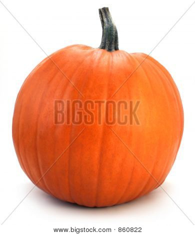 Fall Pumpkin on White