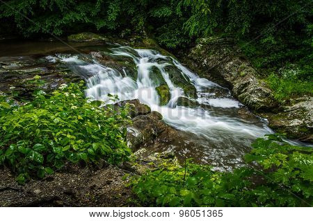 Little River Road Waterfall