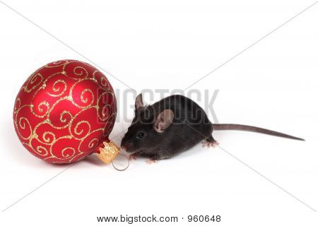 Holiday Mouse
