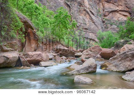 Virgin River. Riverside Walk, Zion National Park, UT