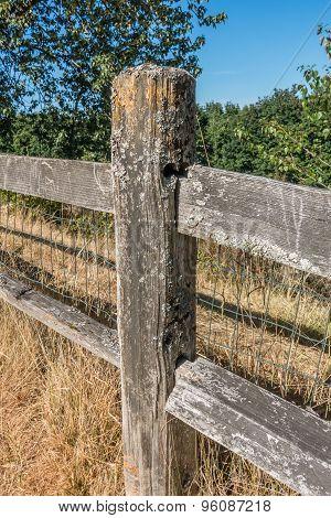 Weatherbeaten Fence Closeup