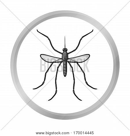 Mosquito icon in monochrome design isolated on white background. Insects symbol stock vector illustration.