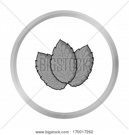 Mint icon in monochrome style isolated on white background. Herb an spices symbol vector illustration.
