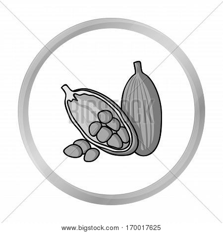 Cocoa fruit icon in monochrome style isolated on white background. Herb an spices symbol vector illustration.